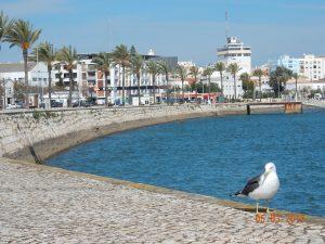 De pier van Portimão, Algarve, Portugal